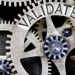 Project validation